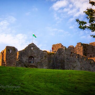 Oystermouth Castle - Wales by Photograph2u
