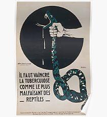 Il faut vaincre la tuberculose comme le plus malfaisant des reptiles Poster