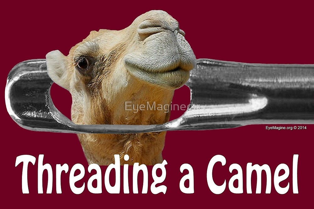 Threading a Camel by EyeMagined