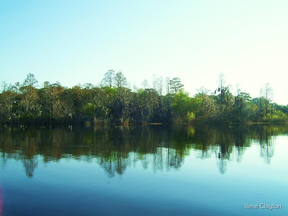 A Hillsboro Haven by Ilene Clayton