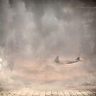 Doomed Plane by Yannik Hay
