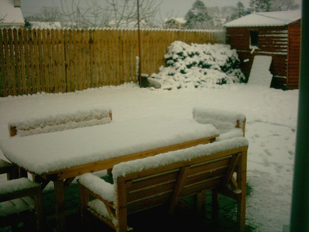 Snowy Garden by Colm Ward