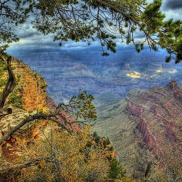 The Grand Canyon View by DianaG