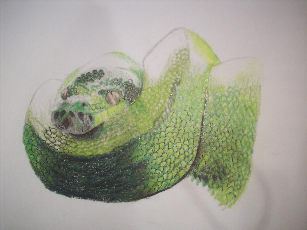 Green Snake by ripinamberlost