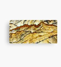 The Mountains Of Jasper Canvas Print