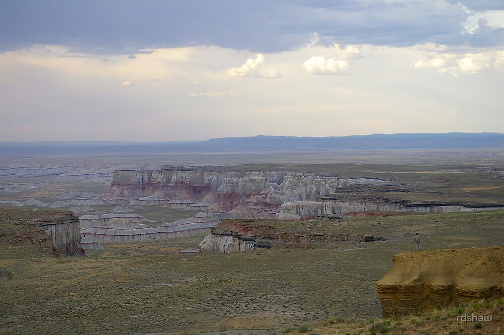 Coal Mine Canyon by rdshaw