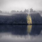 Ethereal reflections (Bleiswijk) by photogenicgreen