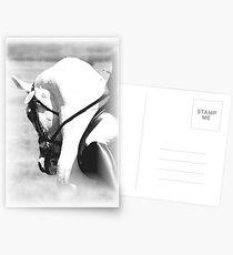 The Warm Up B&W Postcards