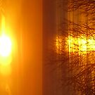 orange morning by brucemlong