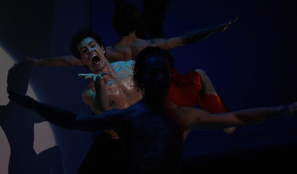 Fierceful Ballet by kiranwest21