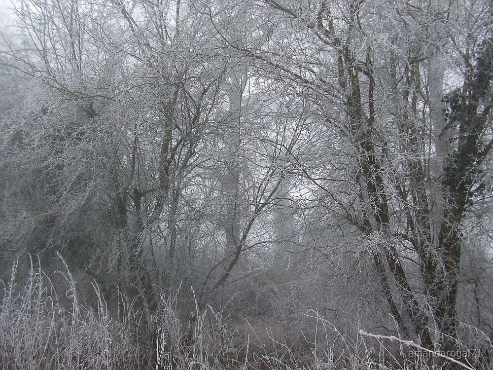 frost by amandaroyal71