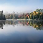 Autumn Impression by Jola Martysz
