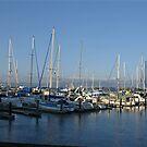 Fishermans Wharf, San Francisco by Cathy Jones