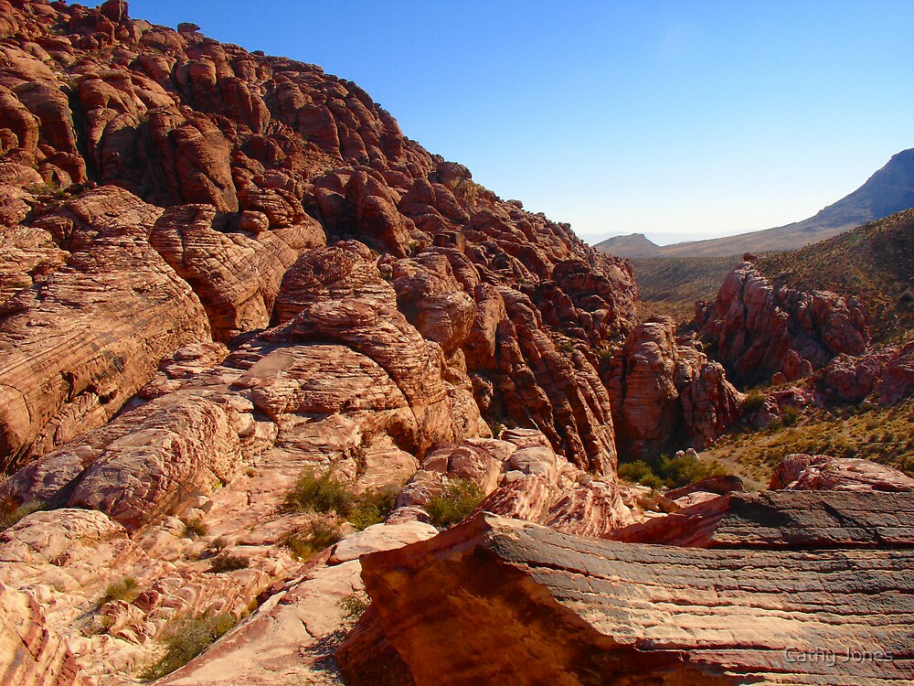 Red Rock by Cathy Jones
