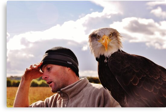 Oh, my head !!!......after a night out on the town Cedric is beginning to hallucinate - he thinks he has a Bald Eagle sitting on his arm ! by Photography  by Mathilde