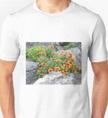 Fire Among The Stones: Rockery Unisex T-Shirt