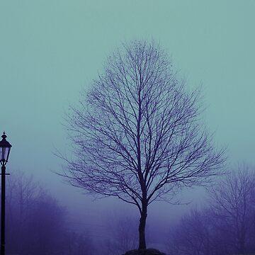 Mist by wittgraham