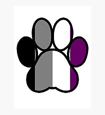 Pride Paws - Asexual 2 Photographic Print