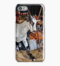 Goat at the Barn iPhone Case/Skin
