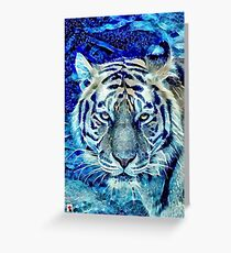 Tiger by Night Greeting Card
