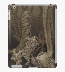 Natural History Glass Sponges iPad Case/Skin