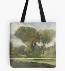 Lake Leota on a Cloudy Day Tote Bag