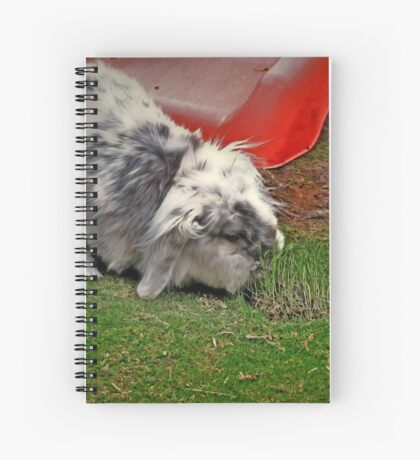The luscious strip Spiral Notebook