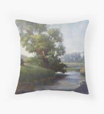 Badfish Creek Near Cooksville Throw Pillow