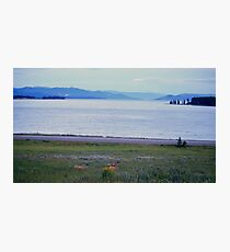 Lovely Deer Family At Yellowstone Lake Photographic Print