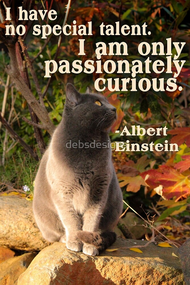 Passionately Curious by debsdesigns