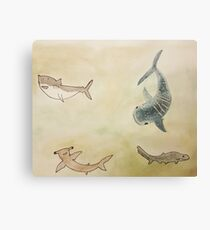 Cute sharks of the world Canvas Print