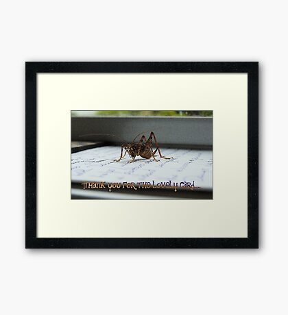 Thank You For The Lovely Card - Weta - NZ Framed Print