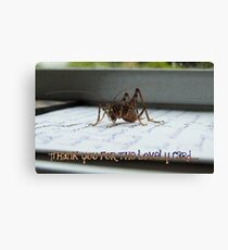 Thank You For The Lovely Card - Weta - NZ Canvas Print