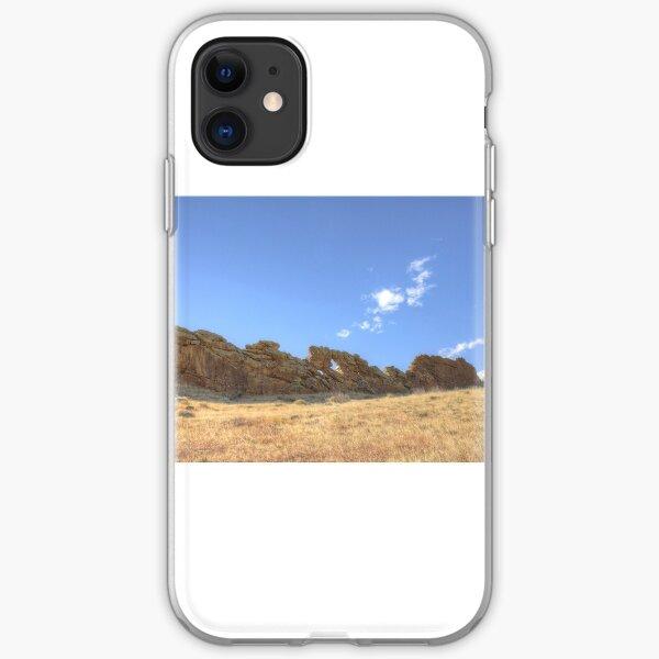 Devil's Backbone iPhone Soft Case