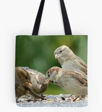 Buffet Lunch! - Sparrows - NZ Tote Bag