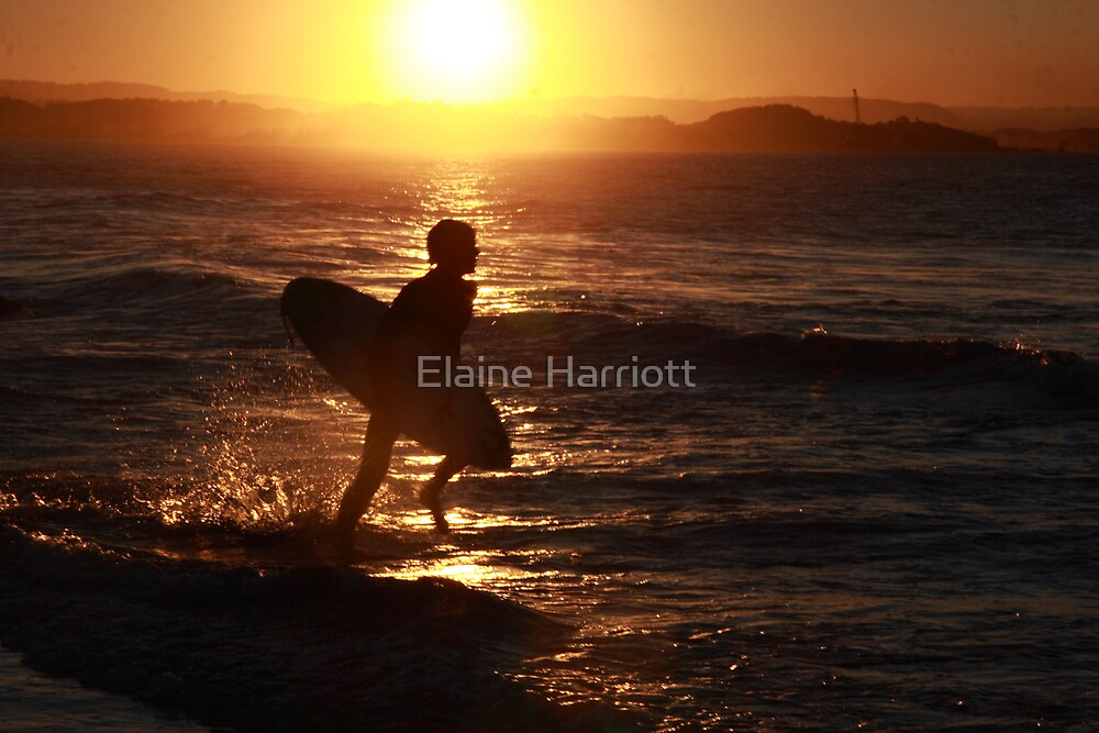 Surf's up by Elaine Harriott