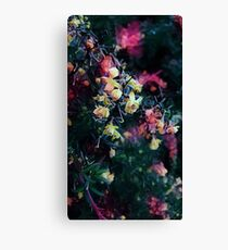 Flower's collection Canvas Print