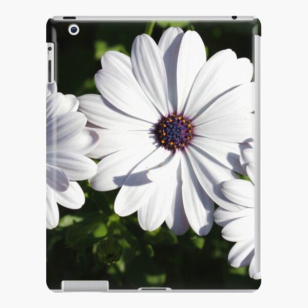 Purple and White Daisys iPad Snap Case