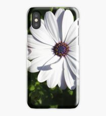 Purple and White Daisys iPhone Case