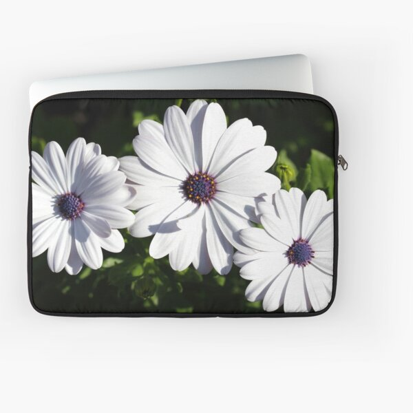 Purple and White Daisys Laptop Sleeve