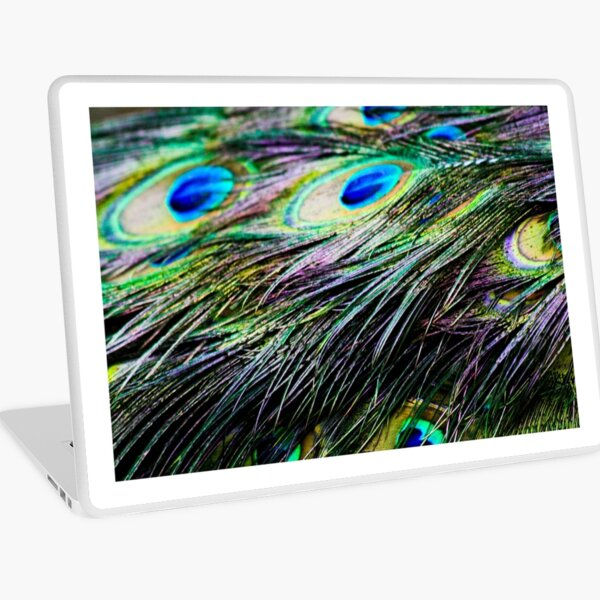 Peacock Pattern Laptop Skin