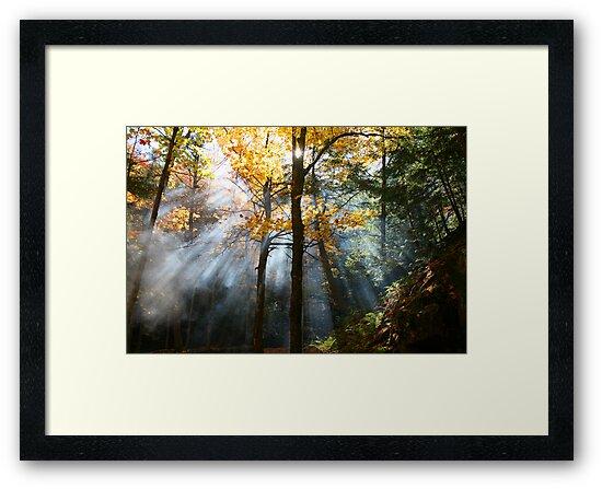 augural autumn aura by CThomasB