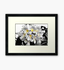 Yellow Centers Framed Print