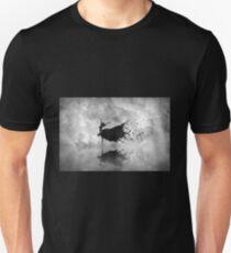 Sky dancer Unisex T-Shirt