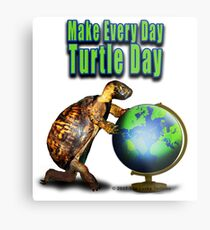 Turtle Day Metal Print