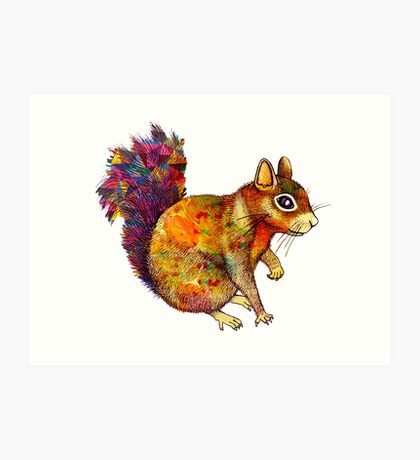 Squirrel Art Art Print