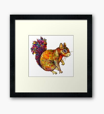 Squirrel Art Framed Print