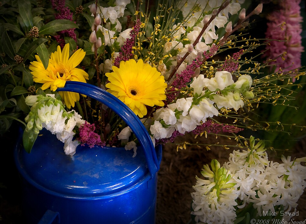 Flowers in a Blue Watering Can by Michael Savad