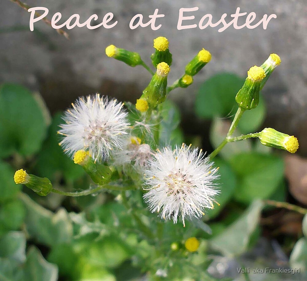 Peace at Easter by Valli  aka Frankiesgirl