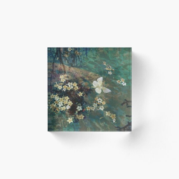 The Butterfly Pond Acrylic Block